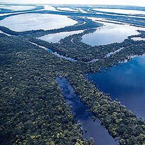 239784 belemmanaus2 Viagem de Barco de Belém para Manaus