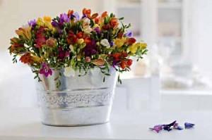 239955 sala flores balde prata 300x199 Flores para Decorar Sala