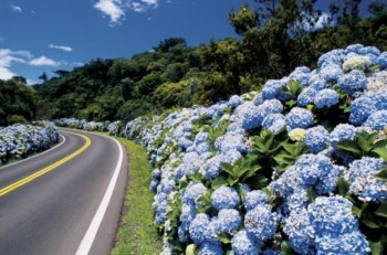 240814 Roteiro de Viagem Para Serra Gaucha2 Roteiro de Viagem Para Serra Gaucha