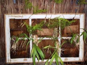 240991 Jardins Vertificais Dicas de Como Montar um 2 300x225 Como Montar Jardins Verticais, Dicas