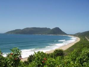 247154 praia da armação SC 300x225 Principais Praias de Santa Catarina