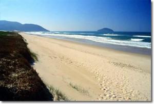 247154 praia do santinho SC 300x204 Principais Praias de Santa Catarina