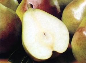 263274 meia pera 300x218 Conheça as frutas que ajudam a queimar as gordurinhas