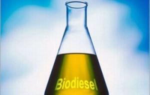 Cientista que Inventou o Biodiesel Morre
