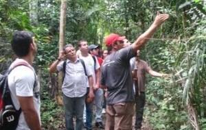 Engenharia Florestal: a profissão do futuro