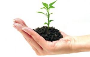 Conheça as Empresas mais Sustentáveis do Mundo