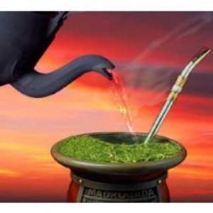 275900 beneficios do chimarrão 3 300x300 Benefícios do chimarrão para a saúde