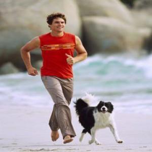 278209 caes 300x300 Cães saudáveis: exercícios para cachorros