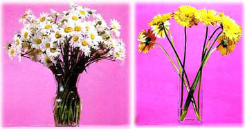 284871 flores que duram Decoração com arranjos e vasos de flores