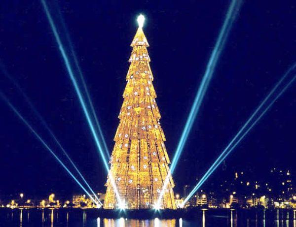 315355 Saiba como surgiu a árvore de natal 1 Saiba como surgiu a árvore de natal