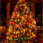 316177 lz 150x150 Vitrines decoradas para o natal