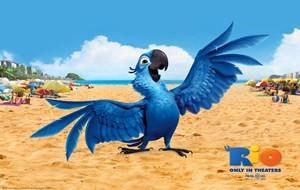 Conheça os filmes que fizeram mais sucesso em 2011