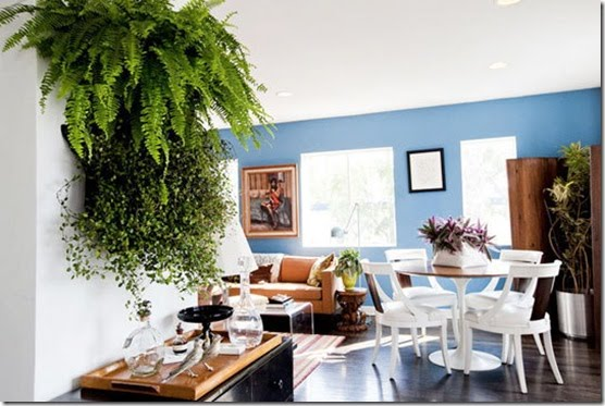 329187 Casa de Valentina via Apartment Therapy samambaias thumb1 Saiba como usar as plantas para decorar a casa