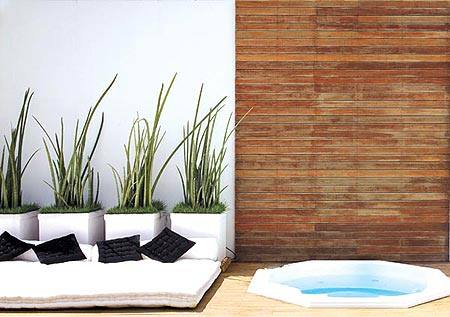 329187 espada Saiba como usar as plantas para decorar a casa