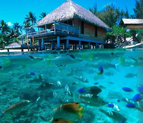 Sugest Es De Viagens Para Ilhas Paradisiacas