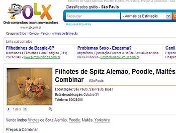331439 anuncioolx copy OLX   Casas à venda, classificados de imóveis