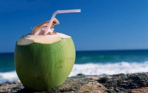 Água de coco: descubra os benefícios da bebida que é a cara do verão