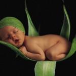 335 bebe 13 150x150 Fotos de Bebês Lindos e Fofos