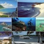 335530 pacotes de viagens para marco 2012 150x150 Pacotes viagens baratos para março 2012