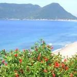 335530 pacotes vagens baratos marco 2012 24 150x150 Pacotes viagens baratos para março 2012