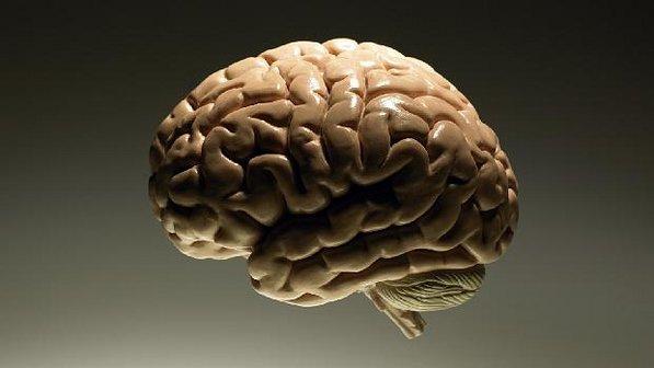 343629 veja O consumo de peixe semanalmente ajuda a evitar o Alzheimer