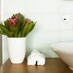 349859 Plantas para banheiro 150x150 Plantas para banheiro