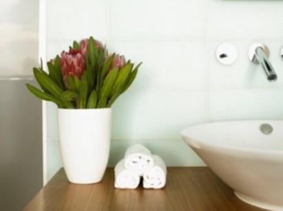 349859 Plantas para banheiro Plantas para banheiro