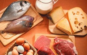 A dieta da proteína