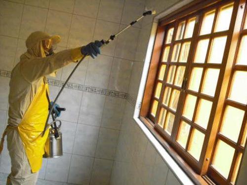 367626 dedetizacao Saiba como acabar com as formigas em casa