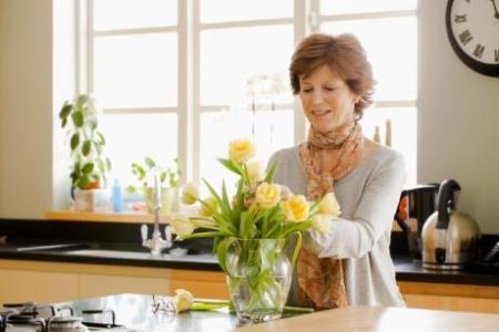 369638 Decoração com plantas ajuda a refrescar a casa 2 Decoração com plantas ajuda a refrescar a casa