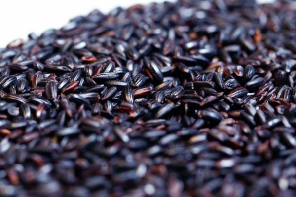 371703 Emagrecer com arroz preto Emagrecer com arroz preto
