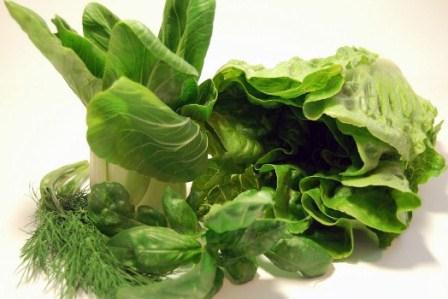 372057 flicrk alexlomas b1 Suco Verde: Perca 5 Kg em 1 semana