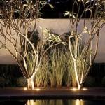 378889 Iluminação para jardim ideias dicas fotos 4 150x150 Iluminação para jardim   ideias, dicas, fotos