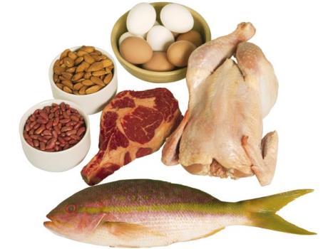 380197 Dieta da Proteína Alimentos permitidos e proibidos 3 Dieta da Proteína: Alimentos permitidos e proibidos
