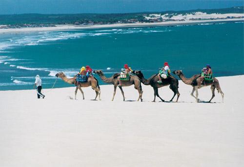382135 pacotes natal rn 9 Pacote de viagens Rio Grande do Norte 2012: Carnaval em Natal