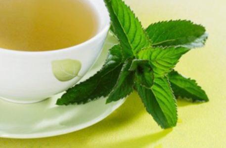 384898 Chá de hortelã benefícios 2 Chá de hortelã: benefícios