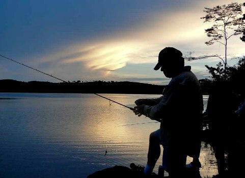 385478 Dicas de varas de pesca modelos como escolher Dicas de varas de pesca, modelos, como escolher