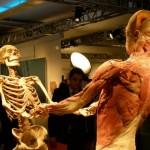 389749 21 150x150 Corpo humano – Fotos