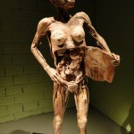 389749 4 150x150 Corpo humano – Fotos