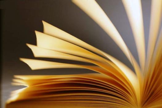 390044 Mestrado em Literatura 1 Mestrado em literatura