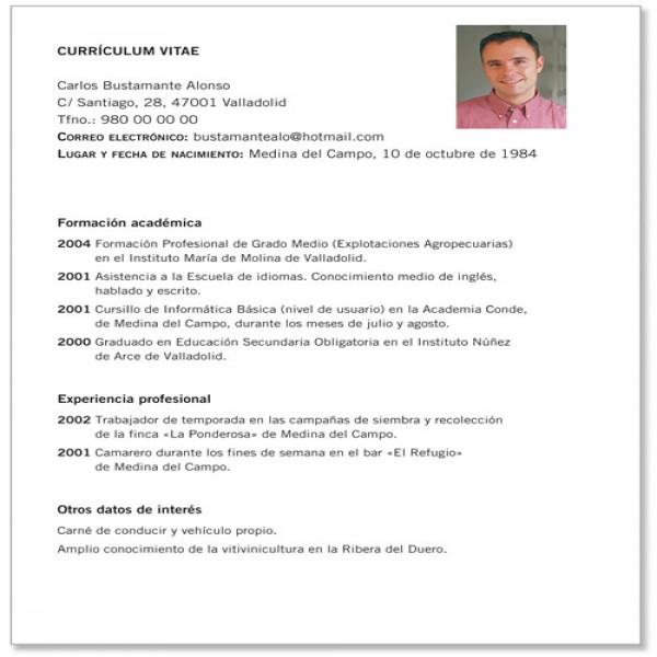 Modelo De Curriculum Vitae Pronto