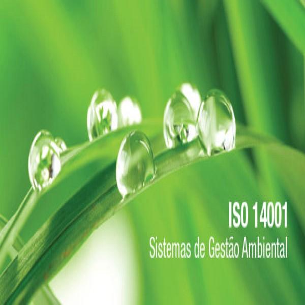 39059 gestão ambiental cursos 600x600 Cursos Gratuitos Gestão Ambiental a Distância EAD