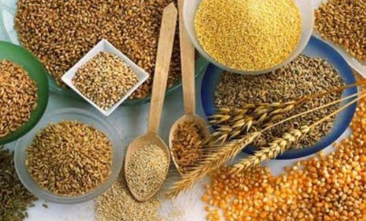 392996 Além de auxiliarem na perda de peso os grãos trazem muitos outros benefícios Conheça os grãos que emagrecem
