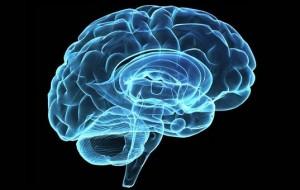 Instigar uma determinada região do cérebro pode aperfeiçoar memória