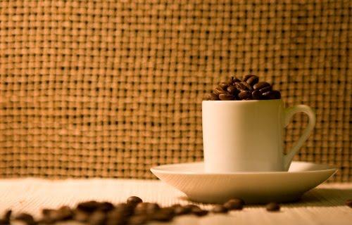 393353 cafe25 Onde conseguir amostras grátis em 2012