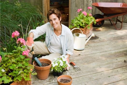 Para Ter No Jardim Dicas Flores Perfumadas Para Ter No Jardim~ Ideias Para Jardim Residencial