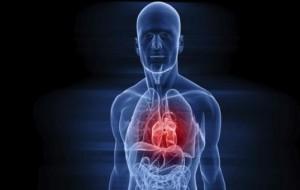 Gel pode pode recuperar musculatura cardíaca prejudicada após infarto