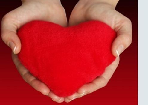 401449 A doação de órgãos é um ato de amor. Cópia Doações de órgãos que podem ser feitas ainda em vida