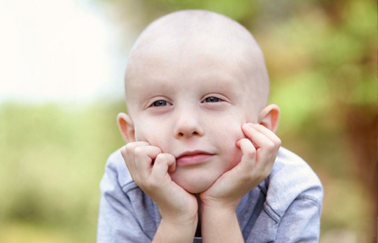 401449 Doar ógãos ajuda a salvar vidas Doações de órgãos que podem ser feitas ainda em vida