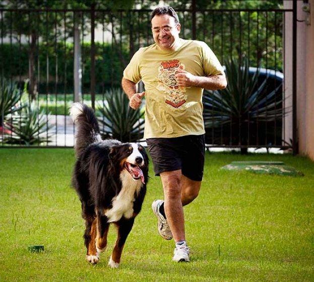 401647 cachorrodromo Como cuidar de cachorro em apartamento